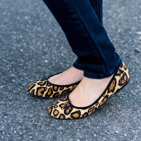 744d3b1b2 Sam Edelman Shoes - Sam Edelman Felicia Leopard Print Ballet Flats - 7
